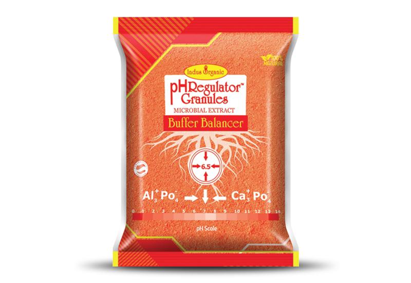 pH Regulator