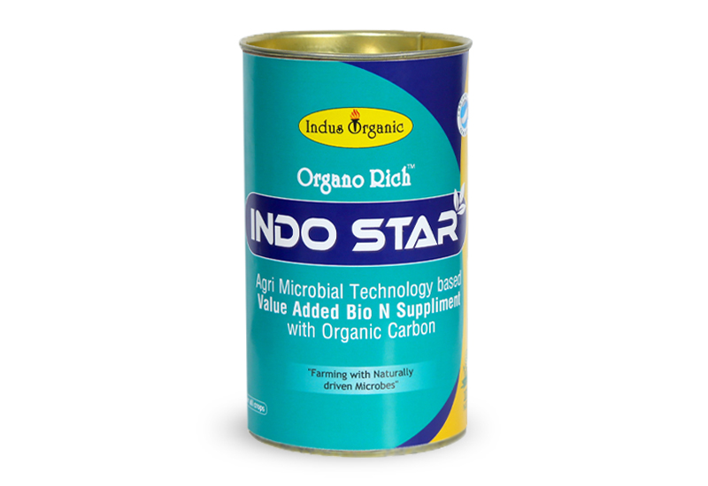 Indo Star