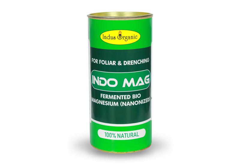 Indo Mag