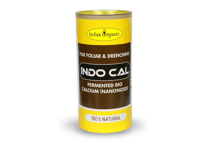 Indo Cal